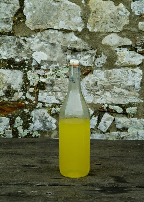 Limoncello Greeting Card featuring the photograph A Bottle Of Limoncello Sits On A Picnic by Todd Gipstein