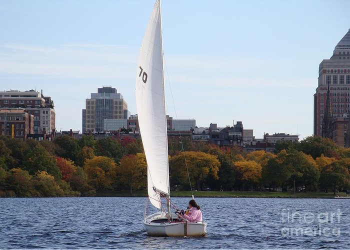 Charles River Greeting Card featuring the photograph a day on the Charles by Robyn Leakey