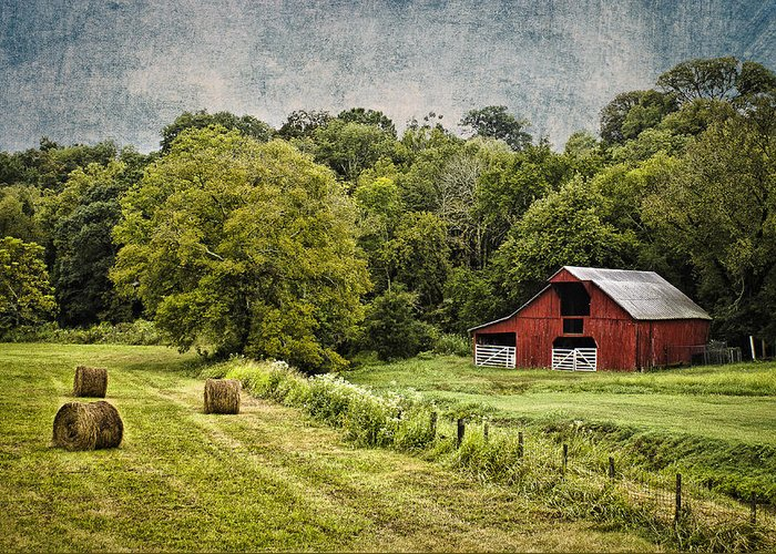 Landscape Greeting Card featuring the photograph A Farmer's Pride by Elizabeth Wilson