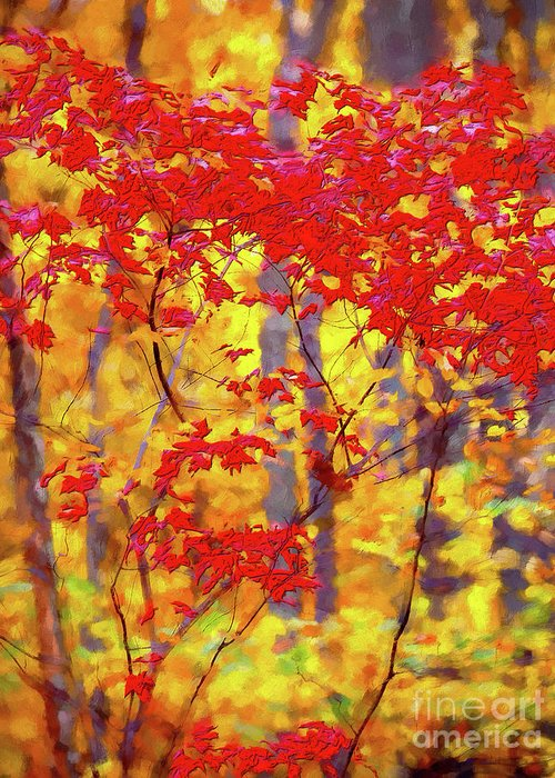 Autumn Greeting Card featuring the digital art A Forest On Fire Ap by Dan Carmichael