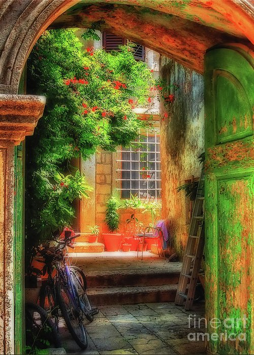 Doorway Greeting Card featuring the photograph A Glimpse by Lois Bryan