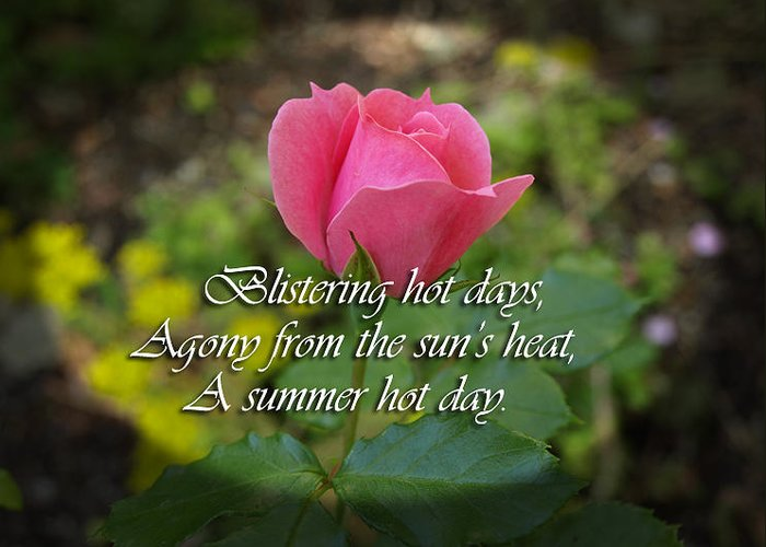 Greeting Card featuring the photograph A Hot Summer Day by Elliptical Art