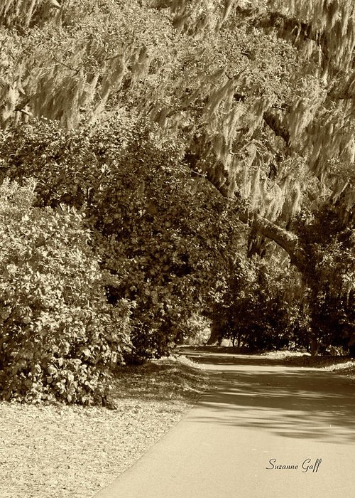 Sepia Greeting Card featuring the photograph A Lowcountry Springtime by Suzanne Gaff