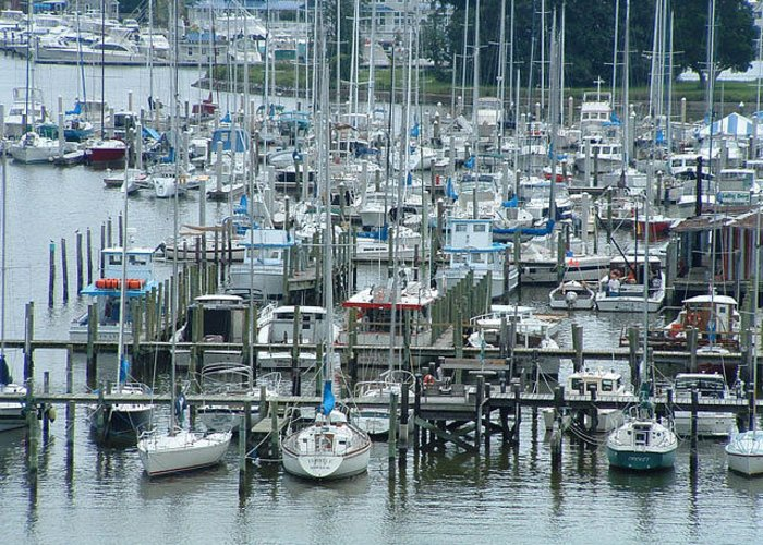 Boats Greeting Card featuring the photograph A Marina by Don Whipple