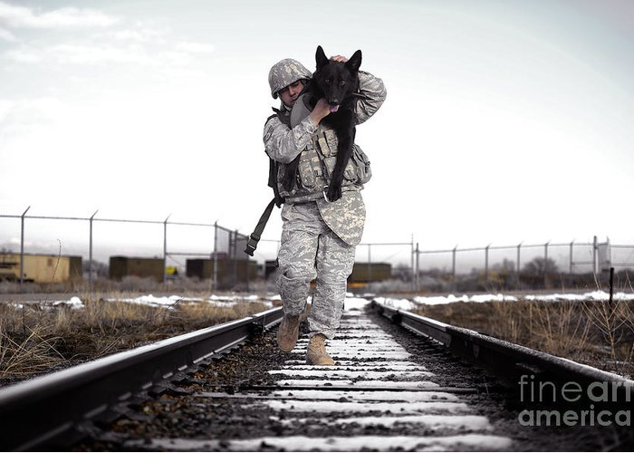 Friendship Greeting Card featuring the photograph A Military Dog Handler Uses An by Stocktrek Images