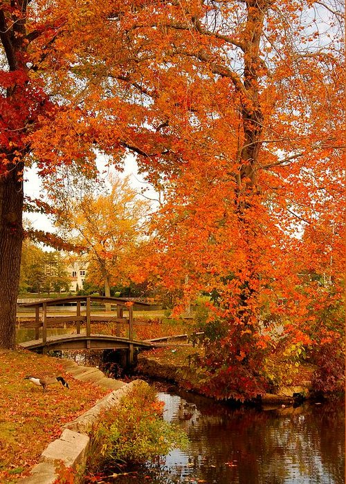 New Jersey Greeting Card featuring the photograph A Morning In Autumn - Lake Carasaljo by Angie Tirado