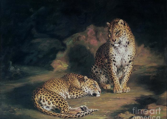 Pair Greeting Card featuring the painting A Pair Of Leopards by William Huggins