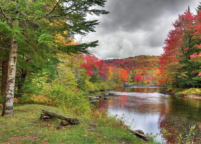 Landscapes Greeting Card featuring the photograph A Place To View Autumn by David Patterson