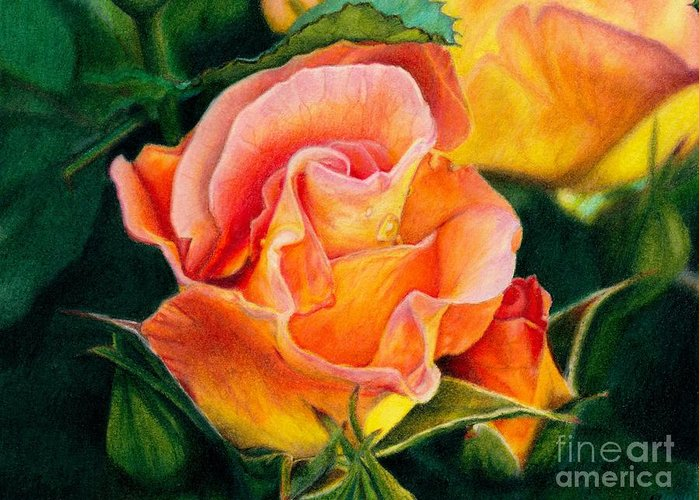 Coloured Pencil Greeting Card featuring the painting A Rose For Nan by Amanda Jensen