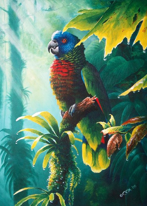 Chris Cox Greeting Card featuring the painting A Shady Spot - St. Lucia Parrot by Christopher Cox
