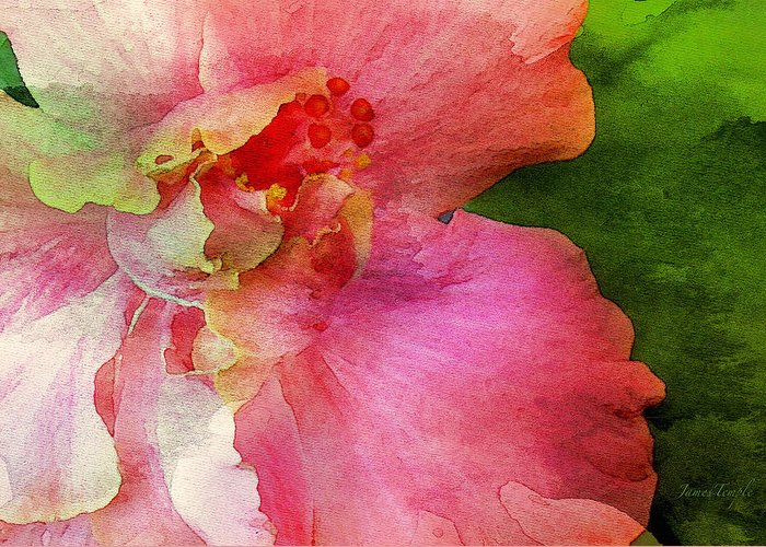 Pink Hibiscus Watercolor Greeting Card featuring the digital art A Splash Of Color by James Temple