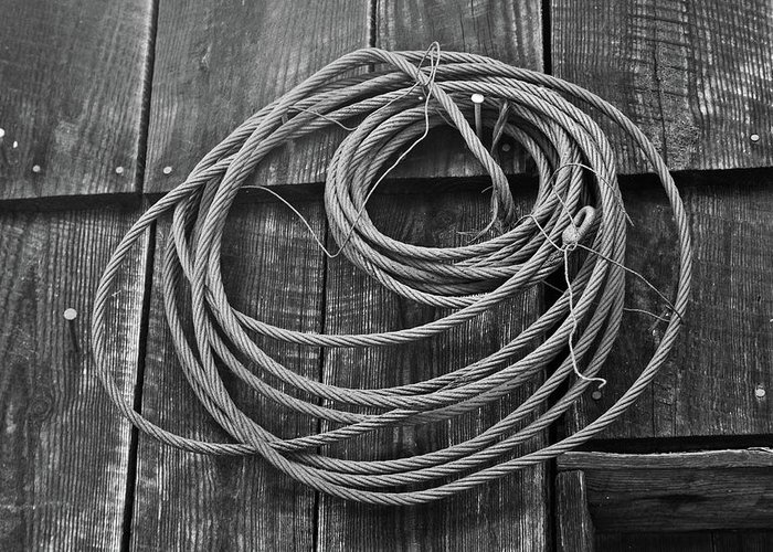 Wire Greeting Card featuring the photograph A Study Of Wire In Gray by Douglas Barnett