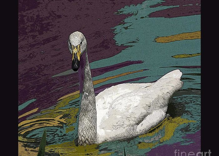 Swan Greeting Card featuring the photograph A Swan Me A Swan by David Carter