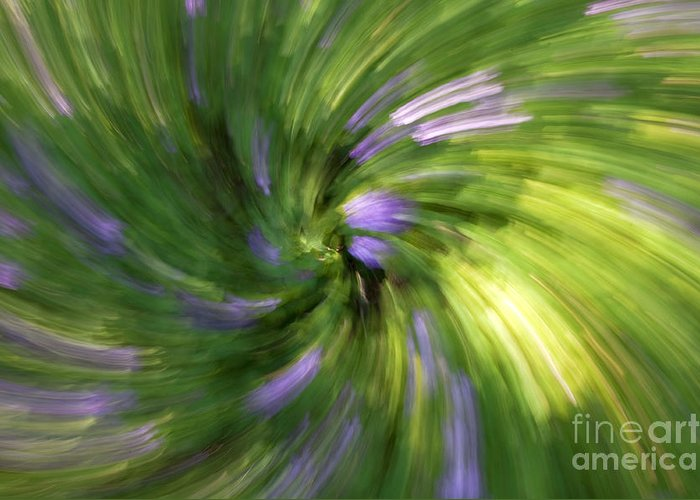 Abstract Greeting Card featuring the photograph A Swirl Of Color Abstract by DeeDee Yelverton