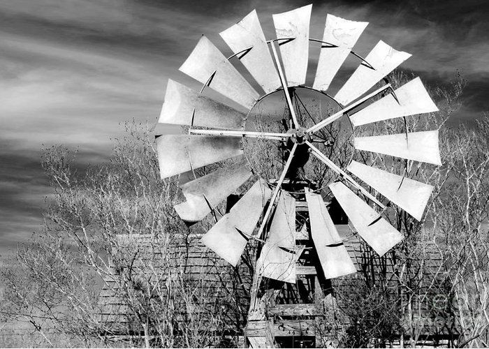 Windmill Greeting Card featuring the photograph A Texas Windmill by Gary Richards