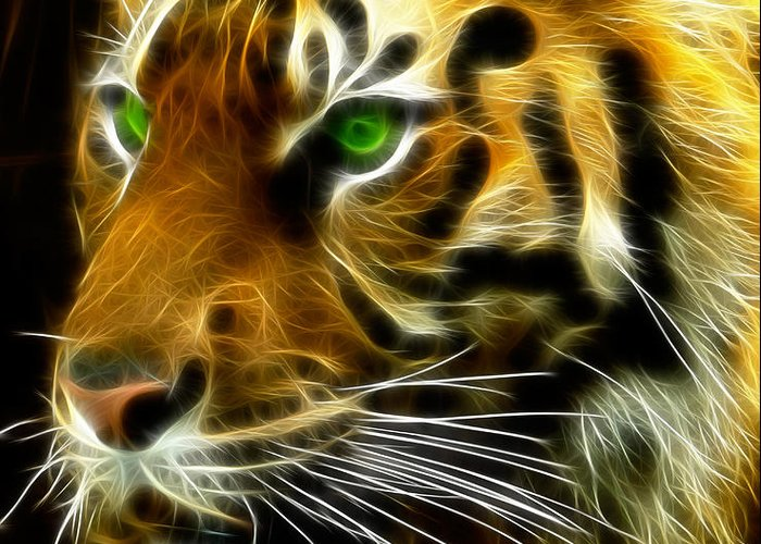 Bengal Greeting Card featuring the photograph A Tiger's Stare by Ricky Barnard