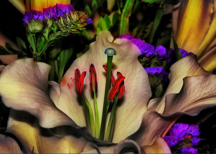Lily Greeting Card featuring the photograph A Touch Of Color by Gary Smith