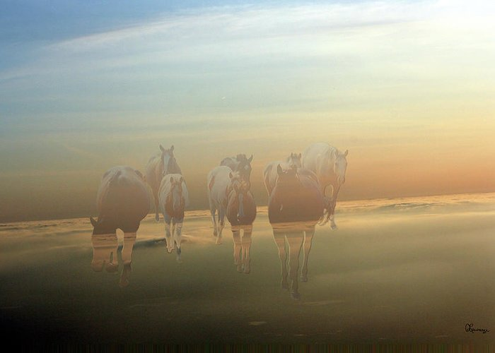 Horses Paint Herd Animals Ranch Farm Colts Quarter Horse Clouds Sky Greeting Card featuring the photograph A Touch Of Horse Heaven by Andrea Lawrence