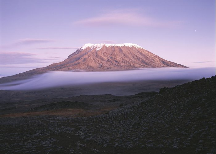 Africa Greeting Card featuring the photograph A View Of Snow-capped Mount Kilimanjaro by David Pluth
