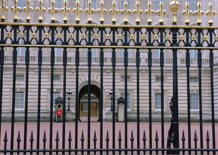 Photography Greeting Card featuring the photograph A View Through The Gates At Buckingham by Joel Sartore
