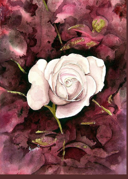Flower Greeting Card featuring the painting A White Rose by Sam Sidders