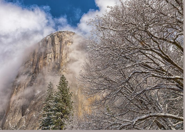 Landscape Greeting Card featuring the photograph A Winter Scene by Jonathan Nguyen