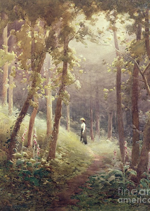 Forest;path;woman;foxglove Greeting Card featuring the painting A Woodland Glade by John Farquharson