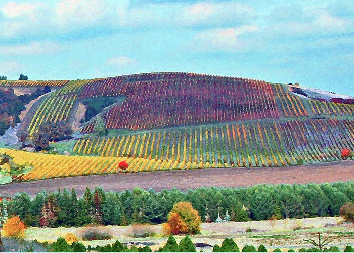Vineyards Greeting Card featuring the photograph A Yamhill Co. Vineyard by Margaret Hood