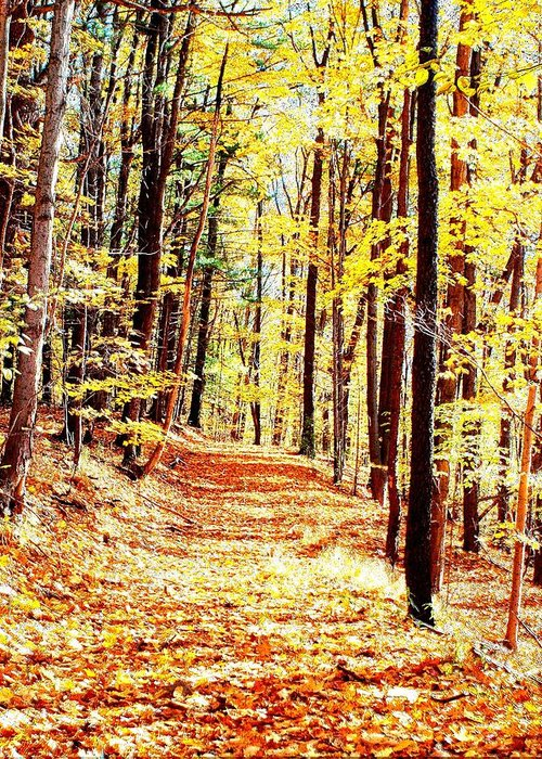 Autumn Greeting Card featuring the photograph A Yellow Wood by Joshua House