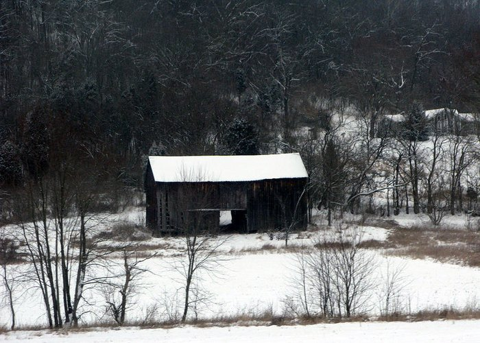 Barn Greeting Card featuring the photograph Abandoned Barn by Martie DAndrea