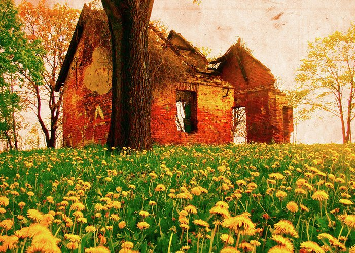 Krakow Greeting Card featuring the photograph Abandoned Beauty by Emily Allred