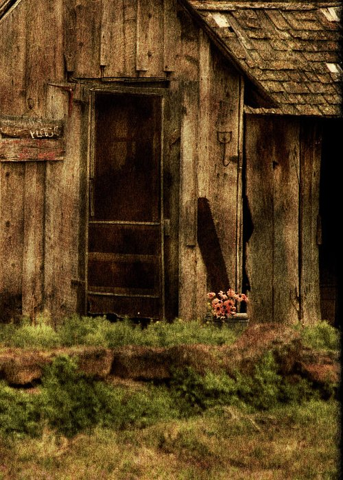 Old Home Greeting Card featuring the photograph Abandoned by Bonnie Bruno