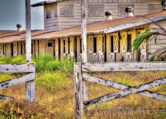 2011 Greeting Card featuring the photograph Abandoned Horse Stables by Connie Cooper-Edwards