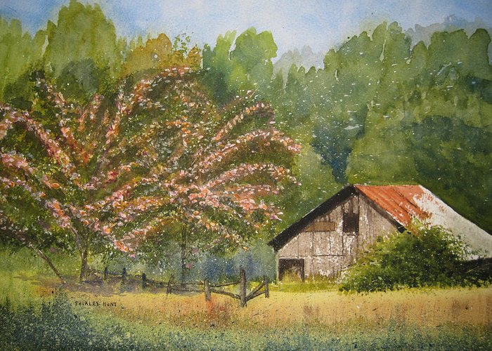 Mimosa Trees Greeting Card featuring the painting Abandoned Mimosas by Shirley Braithwaite Hunt