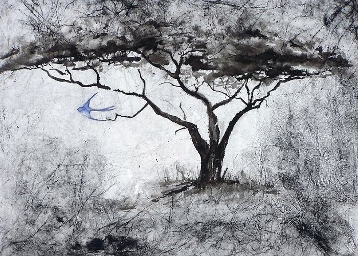 Landscape Greeting Card featuring the painting Acasia Tree by Ilona Petzer