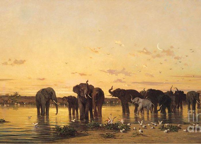African Elephants (oil On Canvas) By Charles Emile De Tournemine (1812-72) Greeting Card featuring the painting African Elephants by Charles Emile de Tournemine
