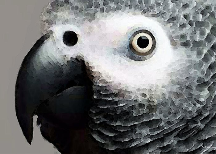 African Gray Greeting Cards
