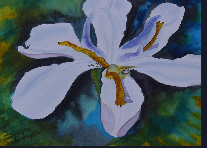 African Iris Greeting Card featuring the painting African Iris by Warren Thompson
