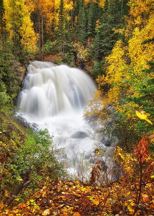 Fall Colors Greeting Card featuring the photograph After The Rain by Ed Boudreau