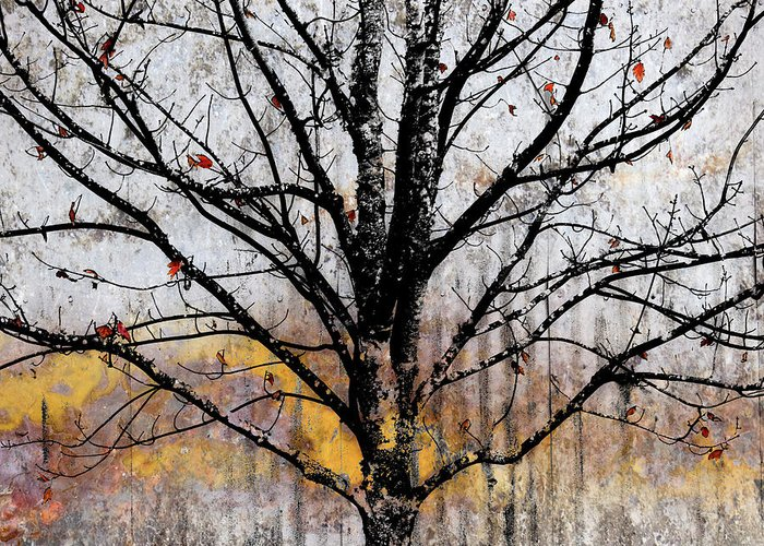 Bare Trees Mixed Media Greeting Cards