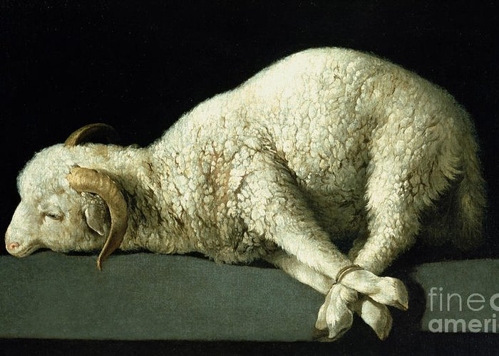 Agnus Greeting Card featuring the painting Agnus Dei by Francisco de Zurbaran