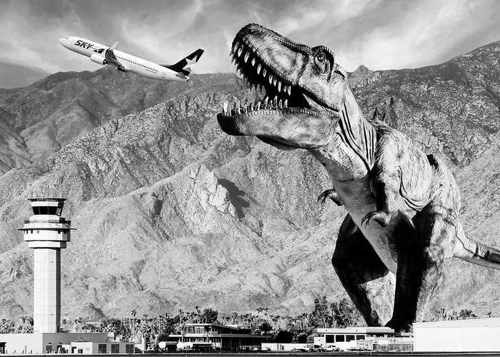 Dinosaur Greeting Card featuring the photograph Airplane Food Black And White by William Dey