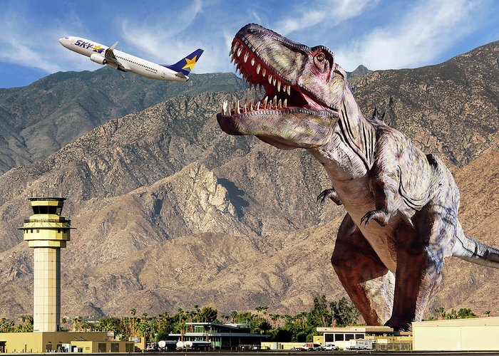 Palm Springs International Airport Greeting Cards