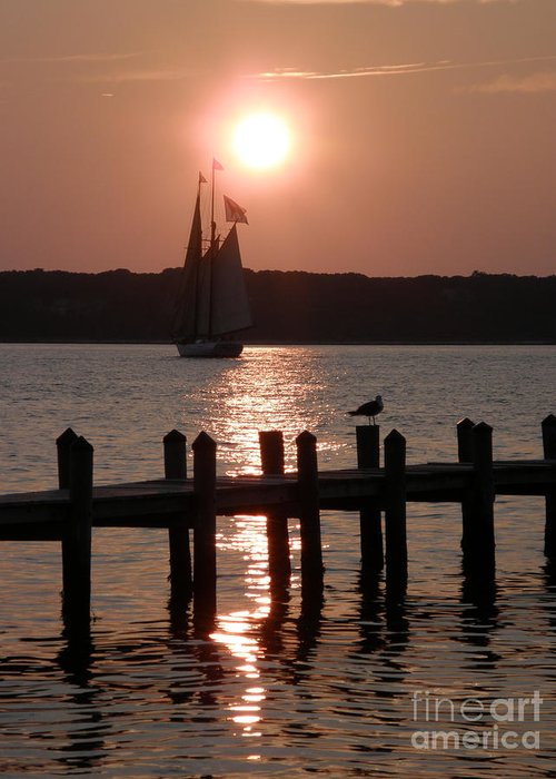 Greeting Card featuring the photograph Alabama Sunset by Carol Christopher