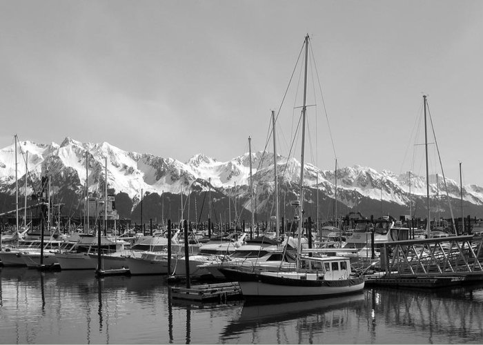 Black And White Greeting Card featuring the photograph Alaskan Harbor by Ty Nichols