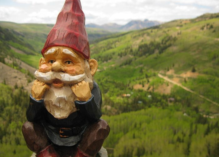 Gnome Greeting Card featuring the photograph Alfred by Amara Roberts