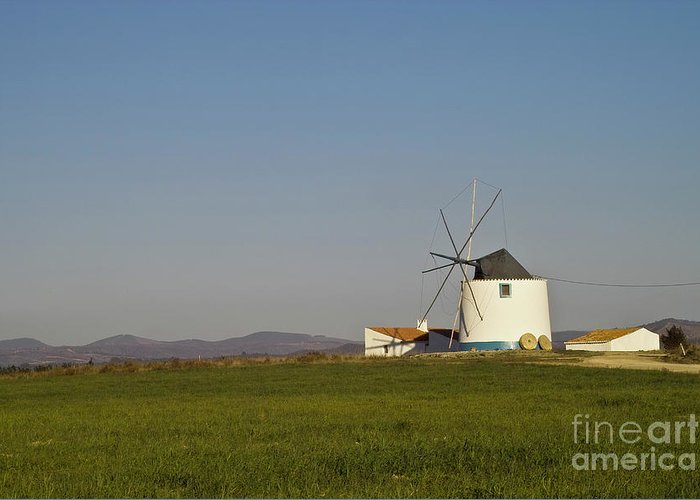 Landscape Greeting Card featuring the photograph Algarve Windmill by Heiko Koehrer-Wagner