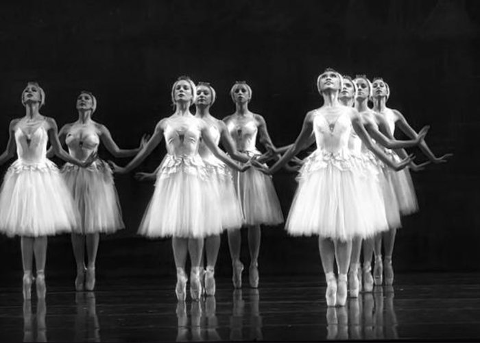 Dance Greeting Card featuring the photograph All In A Row by Kenneth Mucke