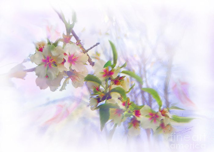 Blossoms Greeting Card featuring the painting Almond Blossoms by Glenyss Bourne