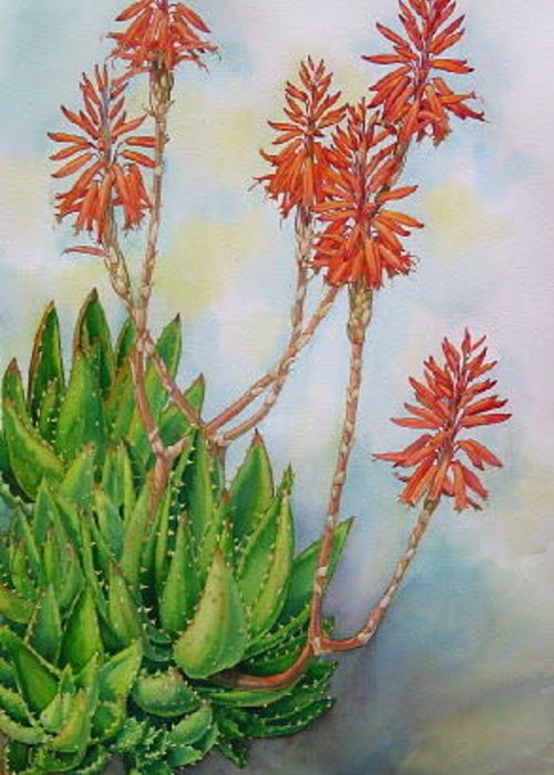 Flowers Greeting Card featuring the painting Aloe Nobiles by Elena Roche